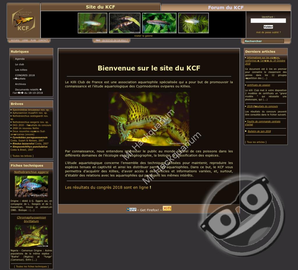 Homepage miroir KCF